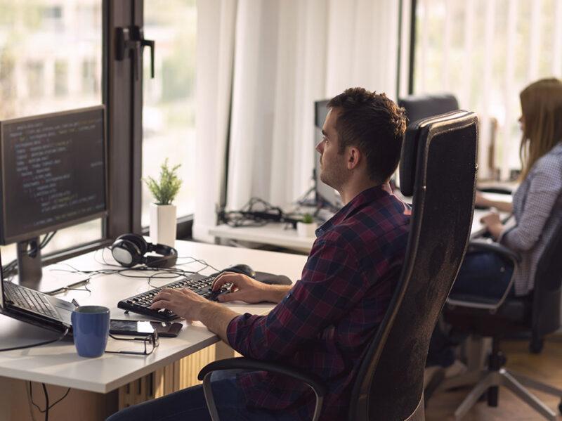web developer e web designer differenze